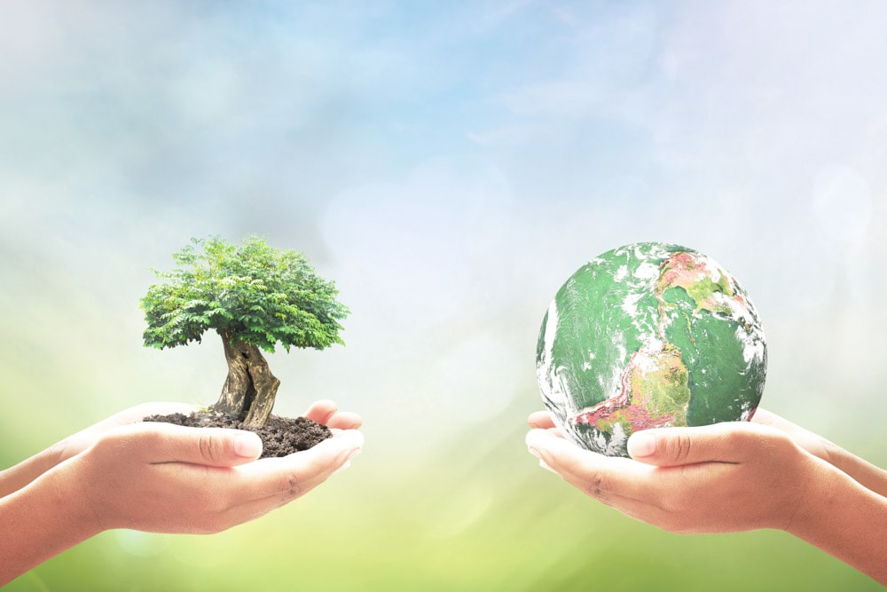 set of hands. one holding a tiny tree image and the other holding a tiny globe image.